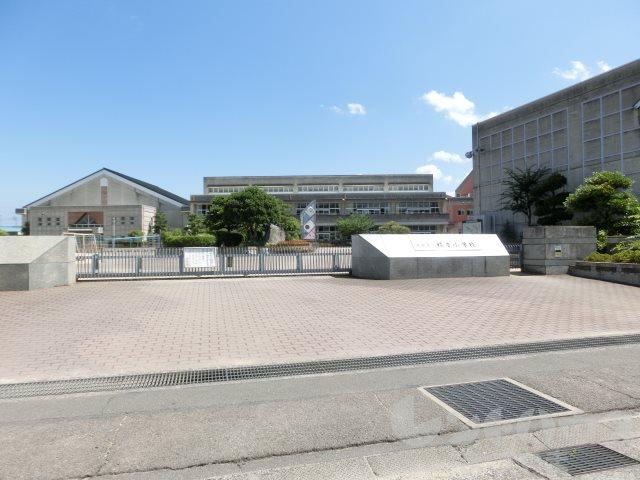 小学校:松山市立福音小学校 1205m