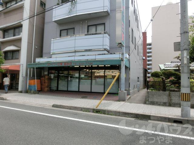スーパー:スーパー日東 高砂店 448m