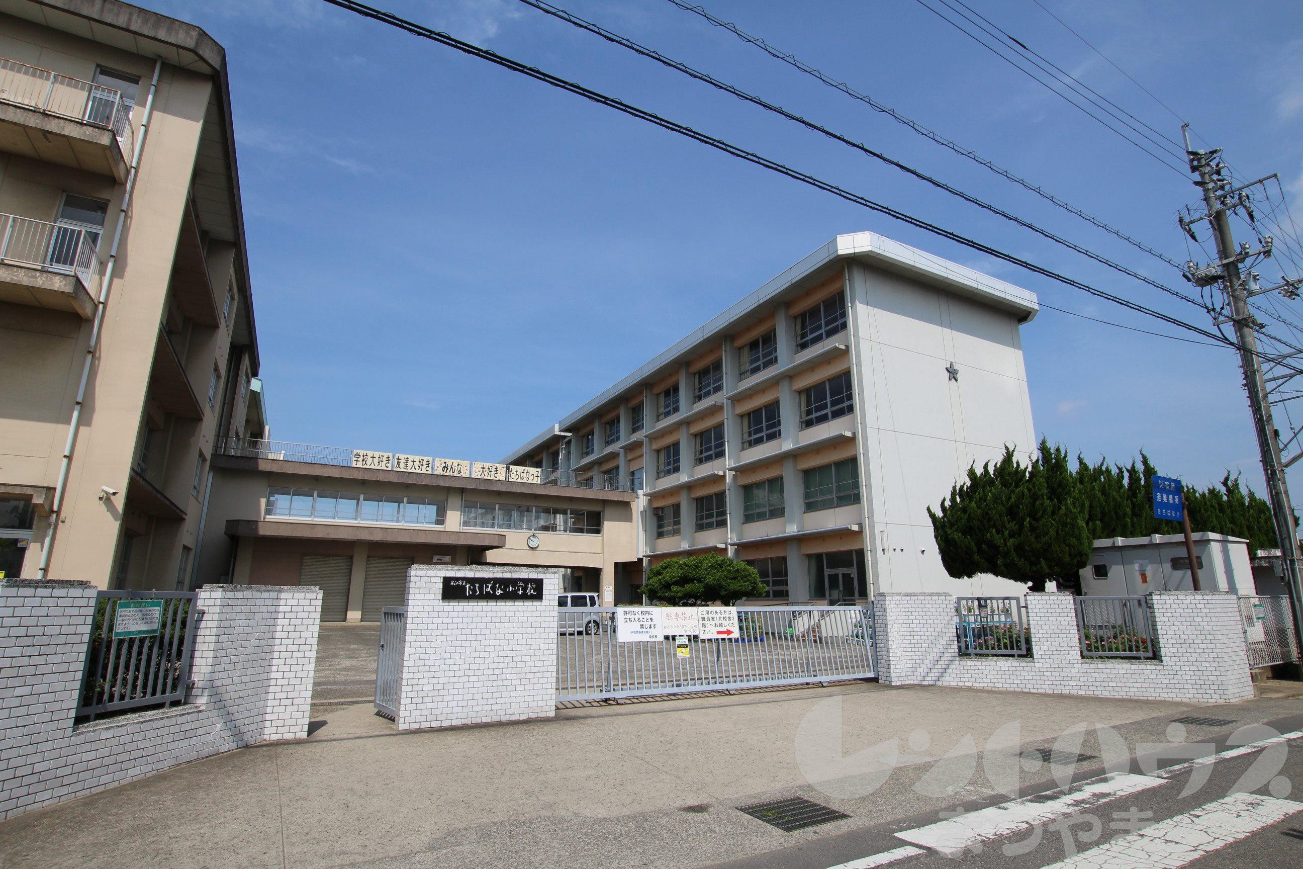 小学校:松山市立たちばな小学校 2056m