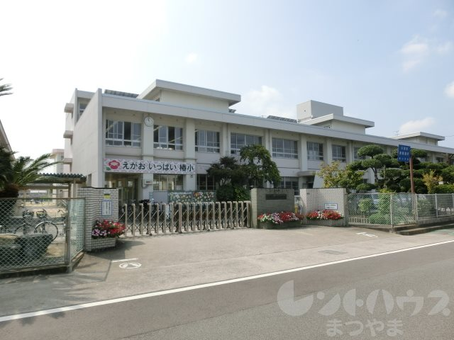 小学校:松山市立椿小学校 898m