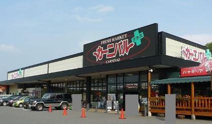 スーパー:CARNIVAL+(カーニバルプラス) ひびきの店 256m