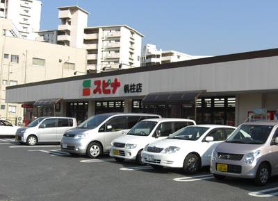 スーパー:SPINA(スピナ) 帆柱店 577m