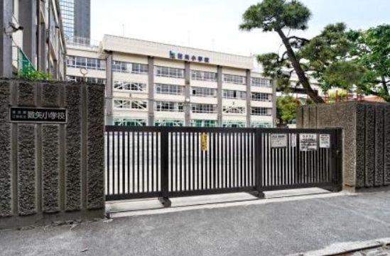 小学校:江東区立数矢小学校 217m
