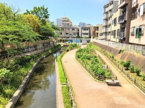 公園:古石場川親水公園 761m