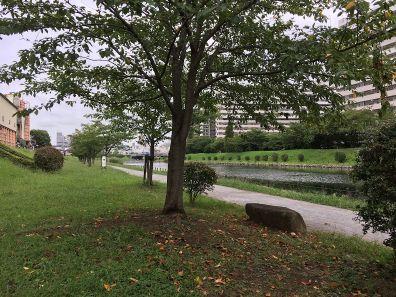 公園:亀戸九丁目緑道公園 944m