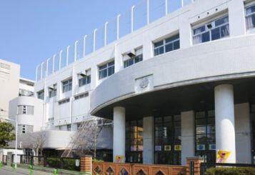 小学校:台東区立東泉小学校 171m