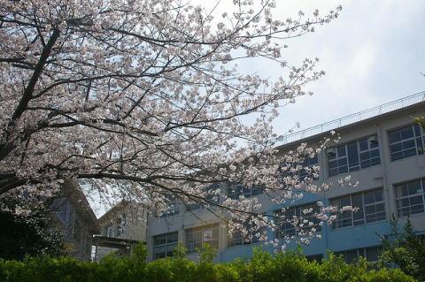 小学校:北九州市立黒畑小学校 718m