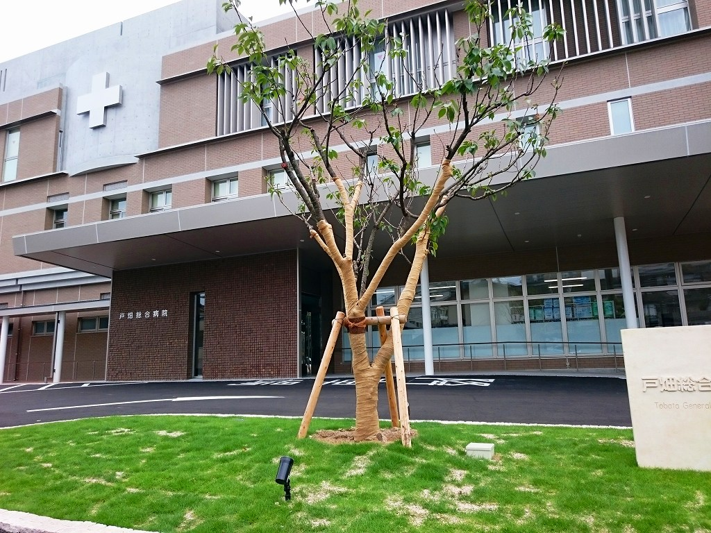 総合病院:戸畑総合病院 1024m
