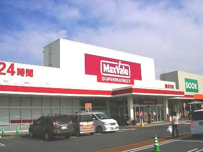 スーパー:マックスバリュ真名子店・ 1279m 近隣