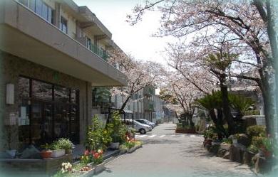 小学校:北九州市立若松中央小学校 624m
