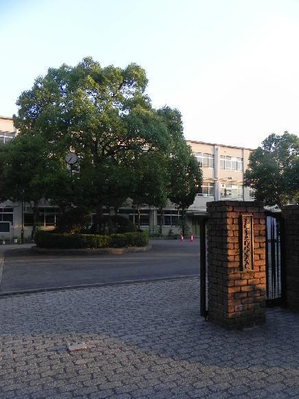 中学校:岡崎中学校 639m